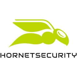 Hornet Secirity Logo